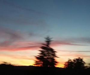 beautiful, blurry, and evening image