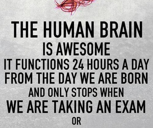 exams, true, and love image