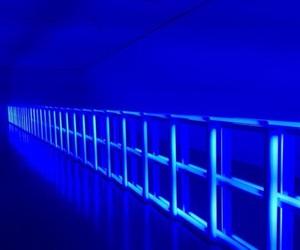 blue and selena gomez themes image