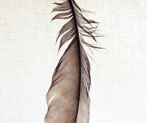 bird, canvas, and neat image
