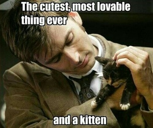 doctor who, kitten, and david tennant image