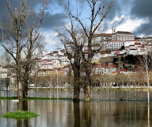 portugal, river, and winter image