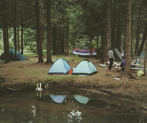 camping, fest, and forest image