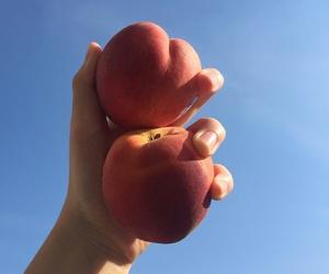 peach, sky, and blue image