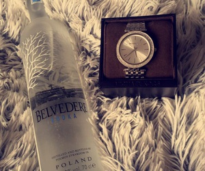 belvedere, party, and michaelkors image