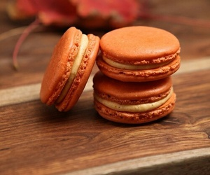 autumn, fall, and macaroons image