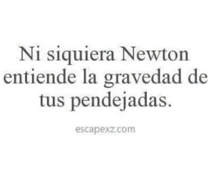 frases and newton image