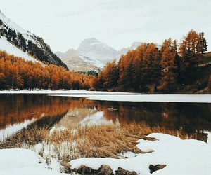 snow, autumn, and nature image