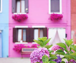 building, travel, and hydrangea image