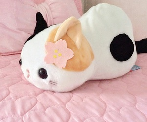 cute, cat, and kawaii image