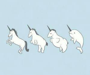 unicorn, blue, and narwhal image