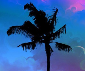 bright, colors, and palm image