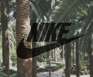 palms, nike, and palm trees image
