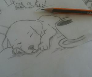 drawing, Kaffee, and labrador image