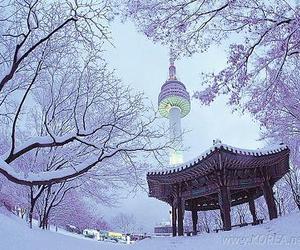 seoul, winter, and korea image