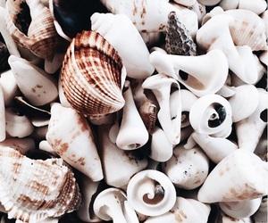 beauty, ideas, and sea image