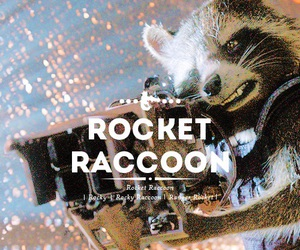 rocket raccoon, Marvel, and rocket image