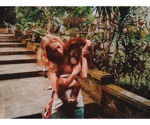 animals, travel, and zippy seven image
