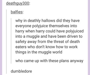 funny, harry potter, and tumblr post image