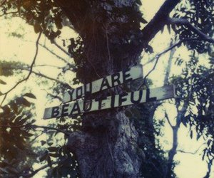 beautiful, tree, and quote image