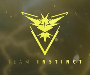 go, team instinct, and instinct image