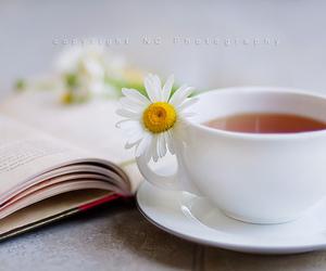 daisy, tea, and book image