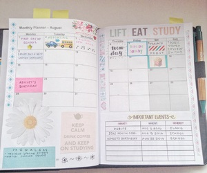 college, inspiration, and organisation image