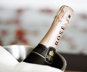 rose, champagne, and drink image