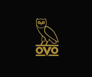 Drake, wallpaper, and ovo owl image