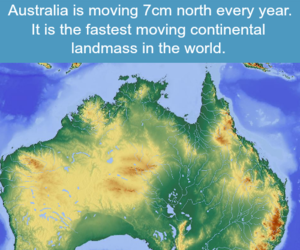 australia, interesting, and facts image