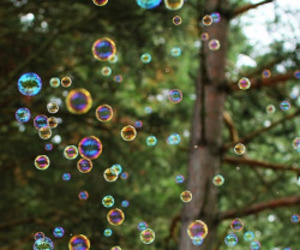 bubbles, forest, and floating image