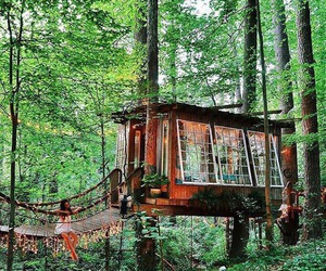 tree house, forest, and house image