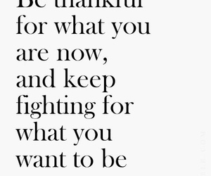 quotes, thankful, and life image