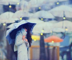 umbrella, girl, and photography image