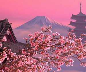 aesthetic, japan, and pinkaesthetic image