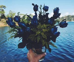 flowers and Best image