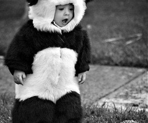 baby, blackandwhite, and panda image