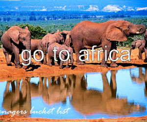 wish, teenagers bucket list, and go to africa image