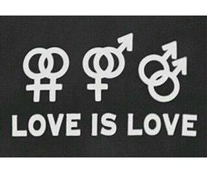 lgbt, gay, and bi image