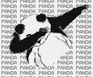 panda, wallpaper, and dab image