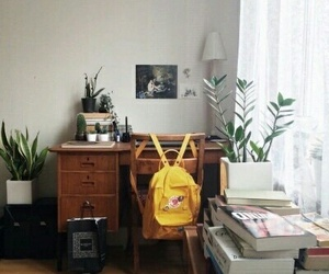 room, tumblr, and plants image