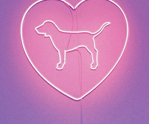 pink, dog, and heart image