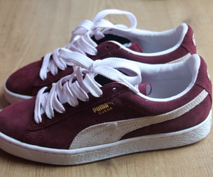 shoes and puma suede image
