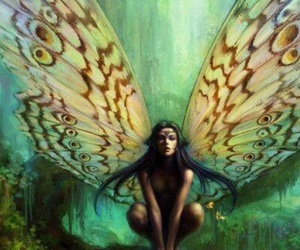 fairy, butterfly, and wings image