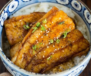 catfish, japanese food, and food image