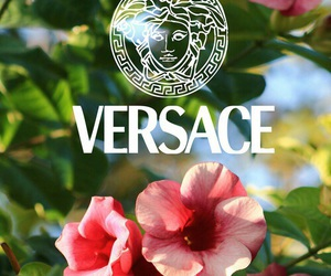 Versace, flowers, and wallpaper image