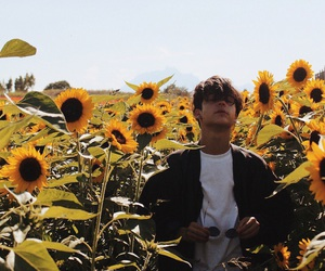 flowers, men, and sunflowers image