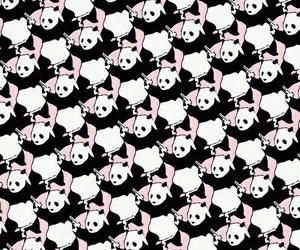 panda, wallpaper, and like image