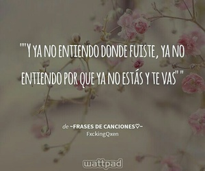 desamor, frases, and canciones image