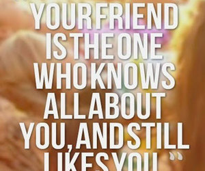 friendship, likes, and quotes image